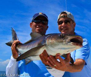 cobia fishing St. Simons Island - Jekyll Island