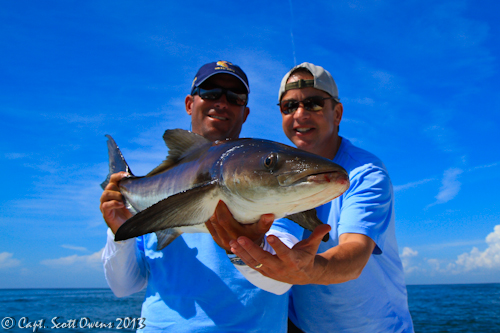 Offshore Deep Sea Fishing charters