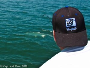 Near Shore Fishing Trips St. Simons Island
