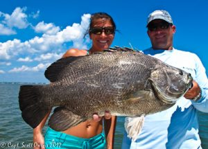 Tripletail Guides