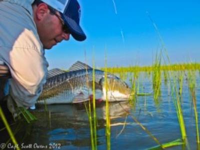 Fly Fishing st simons island flood tides
