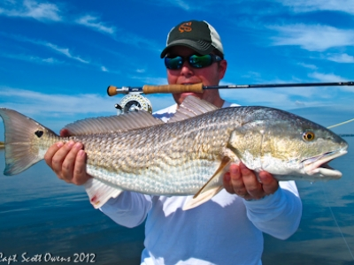 Fly Fishing tailing redfish Jekyll Island