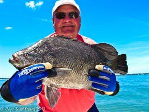 Near Shore Fishing Trips for triple tail