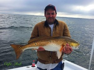 Saint simons island fishing report february 2017 for St simons island fishing report