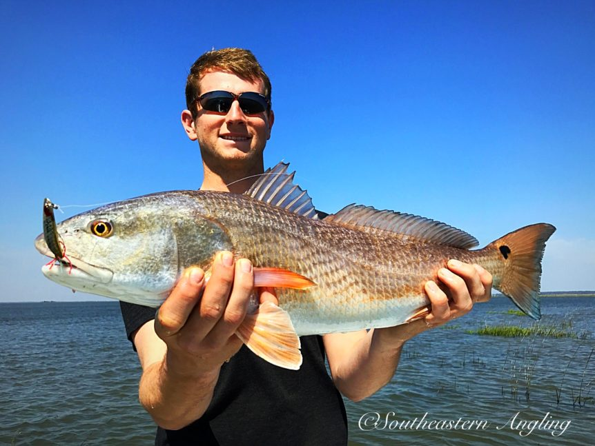Redfish report for saint simons island and jekyll island for St simons island fishing report