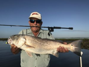 Georgia Redfish