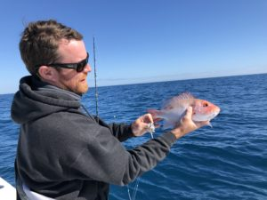 Fishing Charter Update for Near Shore Reef Fishing Coastal Georgia St. Simons Island